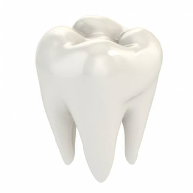Signs and Symptoms Of Impacted Wisdom Teeth