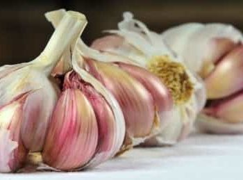 Garlic helps to pop your oral abscess